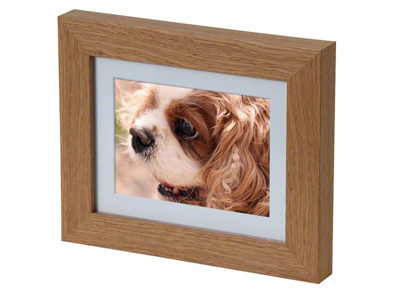 Absent Friends Pet Crematorium Pet Cremation Services In